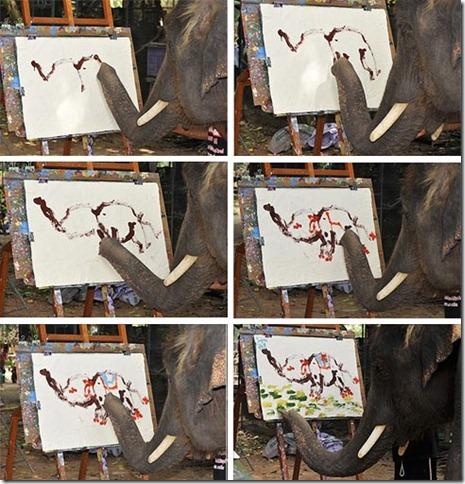 Elephant-Noppakhao_Ayutthaya-province_Thailand-2008
