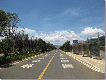 Dedicated Bus Lane -- with no Bus Routes